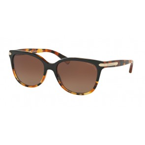 Coach 0HC8132 - L109 Sunglasses Black Tortoise/Tortoise-5438T5