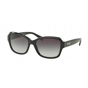 Coach 0HC8160 - L145 Sunglasses Black-500211