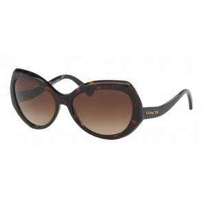Coach 0HC8177 - L1588 Sunglasses Dark Tortoise/Black-524413