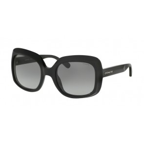 Coach 0HC8194 - L1616 Sunglasses Black-500211