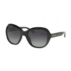 Coach 0HC8197 - L1617 Sunglasses Black-5002T3