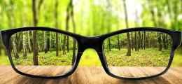 Prescription Eyeglass Lenses