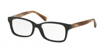 Coach 0HC6047 - Libby Eyeglasses Black/Light Brown Horn-5193