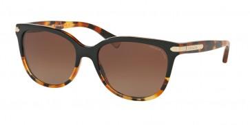 Coach 0HC8132F - L551 Sunglasses Black Tortoise/Tortoise-5438T5