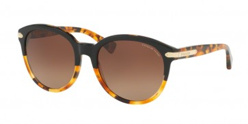 Coach 0HC8140F - L554 Sunglasses Black Tortoise/Tortoise-5438T5