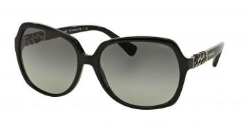 Coach 0HC8155QF Sunglasses Black-500211