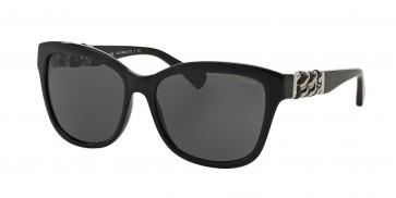 Coach 0HC8156Q - L131 Sunglasses Black-500211
