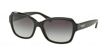Coach 0HC8160F - L562 Sunglasses Black-500211