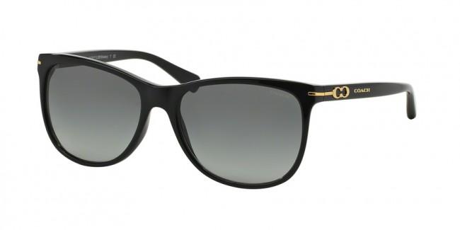 c8d7fa467670a Coach 0HC8117F - L588 Blakely Sunglasses Black-500211