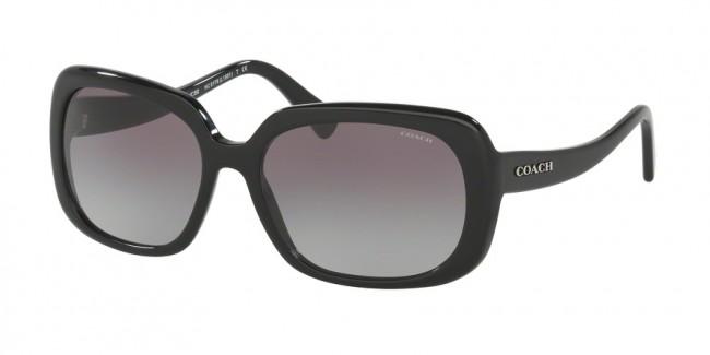 8d4b467da2 Coach 0HC8178F - L1592 Sunglasses Black-500211