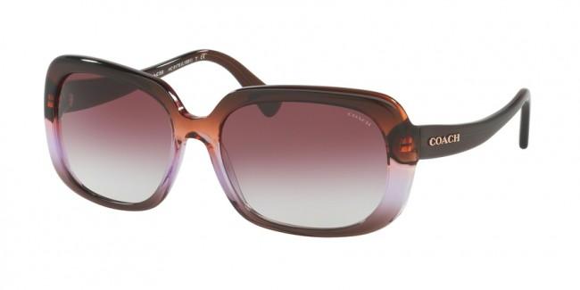 0c2becd36c Coach 0HC8178F - L1592 Sunglasses Purple Brown Gradient Brown-54018H