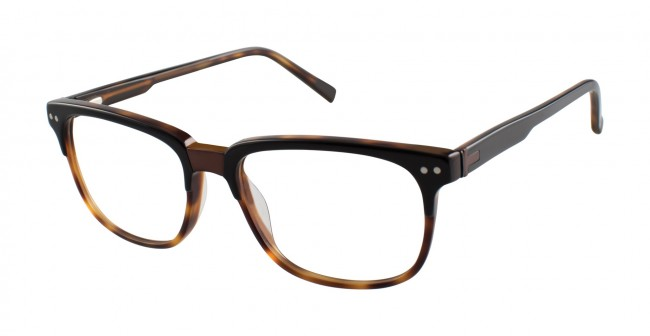 8103539acf0 Ted Baker B892 Eyeglasses-Black Tortosie