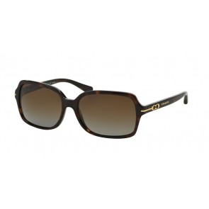 Coach 0HC8116 - L087 Blair Sunglasses Dark Tortoise-5001T5