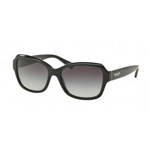 Coach 0HC8160 - L145 Sunglasses Black-500211