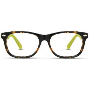 Europa-David-Benjamin-DB-161-Eyeglasses